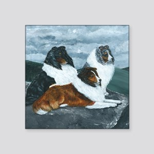 "Mountain Mist Sheltie Square Sticker 3"" x 3"""