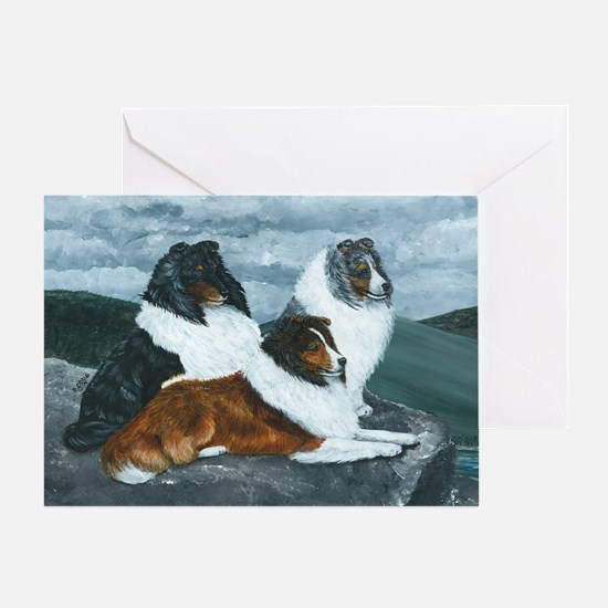 Mountain Mist Sheltie Greeting Card