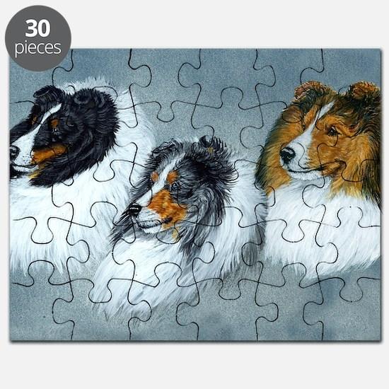 Sheltie Headstudies Puzzle