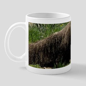 (1) Giant Anteater Mug