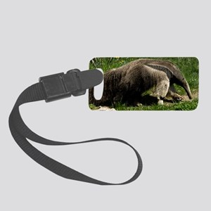(1) Giant Anteater Small Luggage Tag