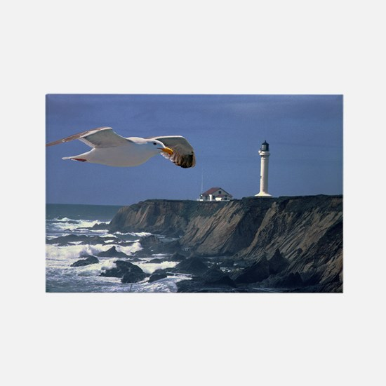 (4) lighthouse  seagull Rectangle Magnet