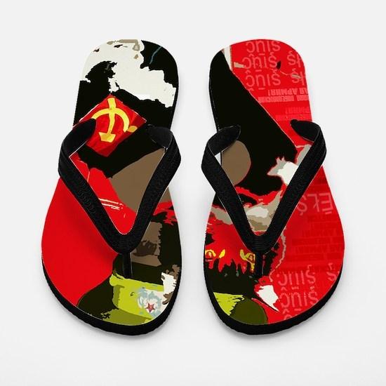 Propagandacat Flip Flops