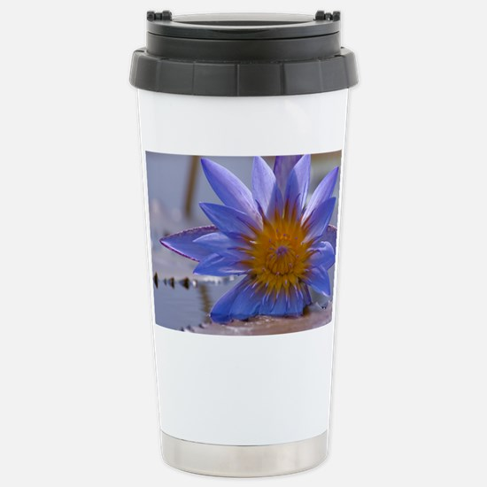 Brillance Stainless Steel Travel Mug