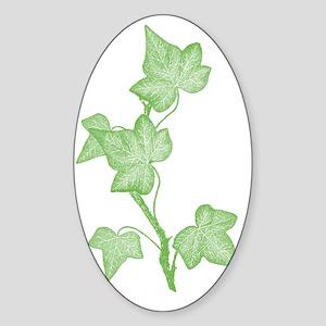 IvyLeaves Sticker (Oval)