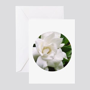 Gardenia Greeting Cards (Pk of 10)