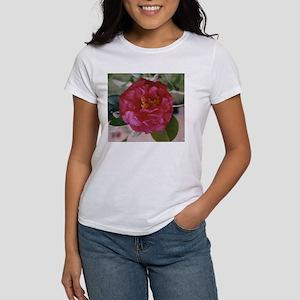 Magenta Camellia Women's T-Shirt