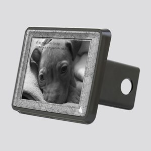 lokiframe Rectangular Hitch Cover