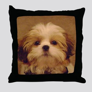DSC00094 Throw Pillow