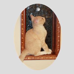 window_kitten Oval Ornament