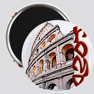 rome-coliseum-t-shirt Magnet