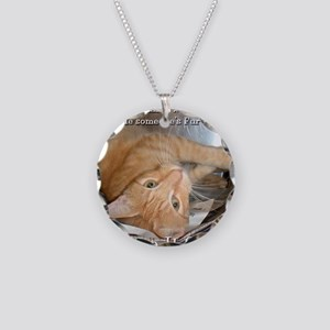 2-tabby Necklace Circle Charm