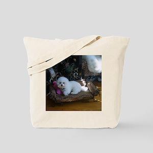 Maggie-Mar-5-2010-PILLOW copy Tote Bag