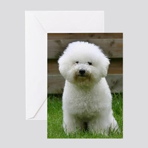 bichon-frise-0126 Greeting Card