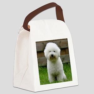 bichon-frise-0126 Canvas Lunch Bag