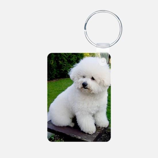 bichon-frise-0043 Keychains