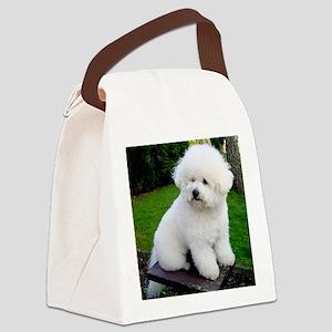 bichon-frise-0043 Canvas Lunch Bag