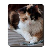 Calico Mouse Pads