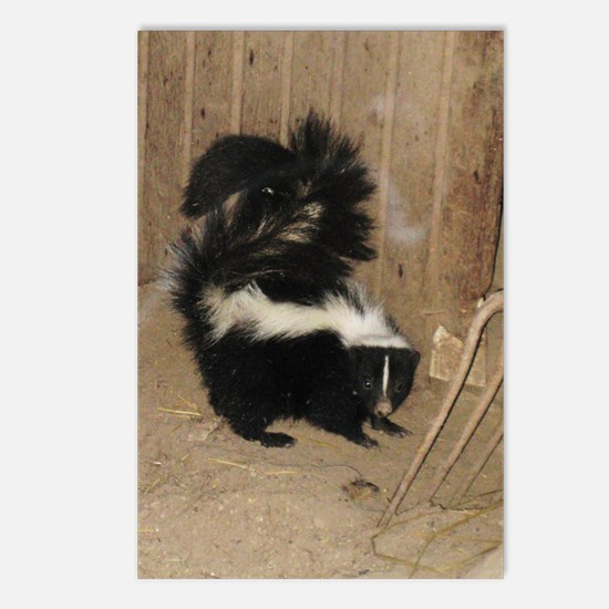 Baby Skunk Postcards (Package of 8)