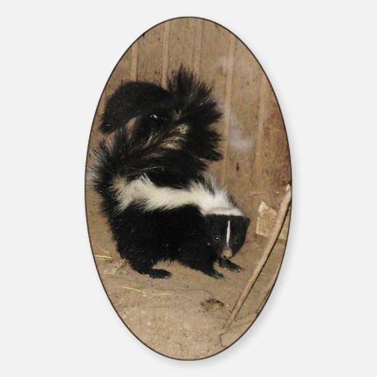 Baby Skunk Sticker (Oval)
