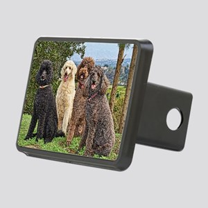 Poodlesterispark0027painti Rectangular Hitch Cover
