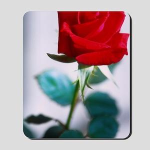single red rose Mousepad