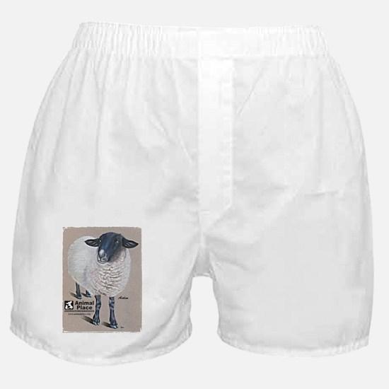 AidenAEdges1-150 Boxer Shorts