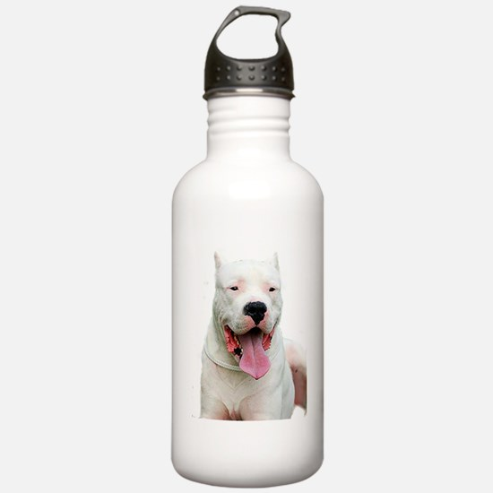 Dogo_Argentino Water Bottle