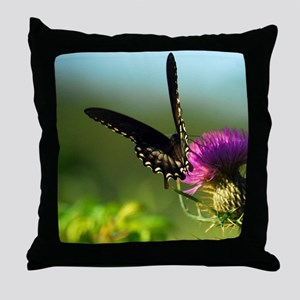 Black Swallowtail #080-1 08-22-09 -1 Throw Pillow