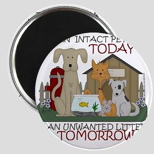 intact-tshirtsize Magnet