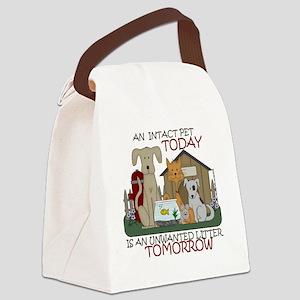 intact-tshirtsize Canvas Lunch Bag