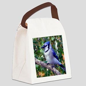 BJPP Canvas Lunch Bag
