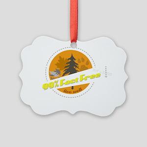 v2_99_FF_apparel Picture Ornament