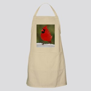 Cardinal for notecard- 01-18-09 and 01-19-0 Apron