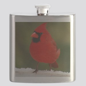 Cardinal for notecard- 01-18-09 and 01-19-0 Flask
