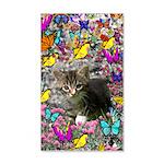 Emma Gray Tabby Kitty Butterflies 20x12 Wall Decal