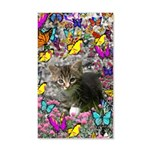 Emma Gray Tabby Kitty Butterflies 35x21 Wall Decal