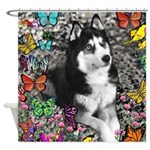 Irie Siberian Husky Butterflies Shower Curtain