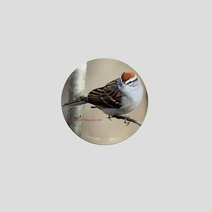 IMG_0324 copy Mini Button