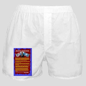 AV-BackCover-v2 Boxer Shorts