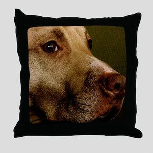 IMG_3365 Throw Pillow