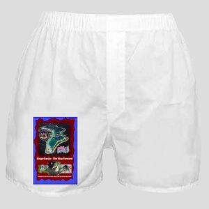 AV-FrontCover-v2 Boxer Shorts