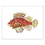 Red Lionfish Posters