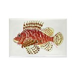 Red Lionfish Magnets