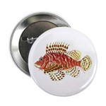 Red Lionfish 2.25