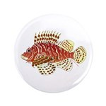 Red Lionfish 3.5