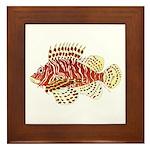 Red Lionfish Framed Tile