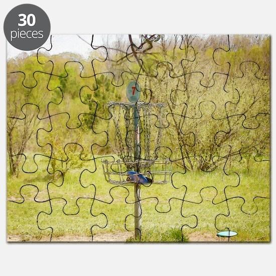 Disc Golf Basket 7 Puzzle