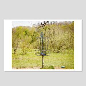 Disc Golf Basket 7 Postcards (Package of 8)