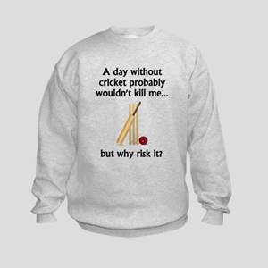 A Day Without Cricket Sweatshirt